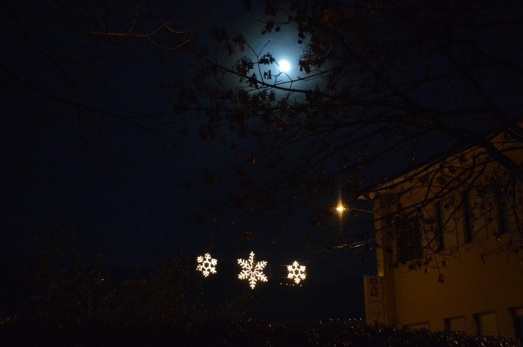 NataleInsieme-11-dicembre-2016-242